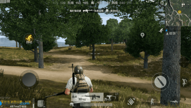 Photo of Chinese PUBG Mobile: Army Attack – New beta adds Fortnite features