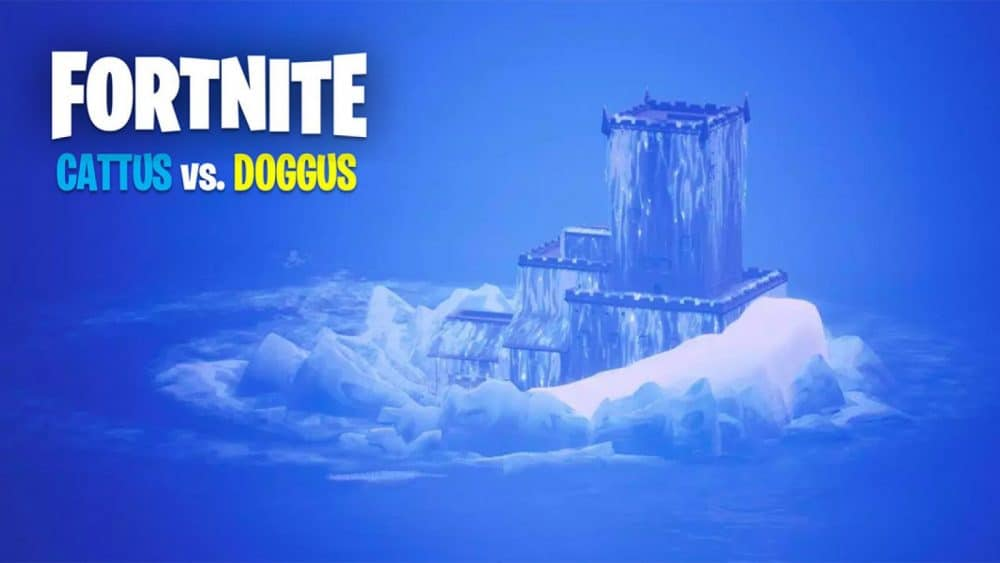 fortnite cattus doggus